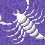 מזל עקרב – הטרנספורמציה מעקרב, לנחש ולנשר